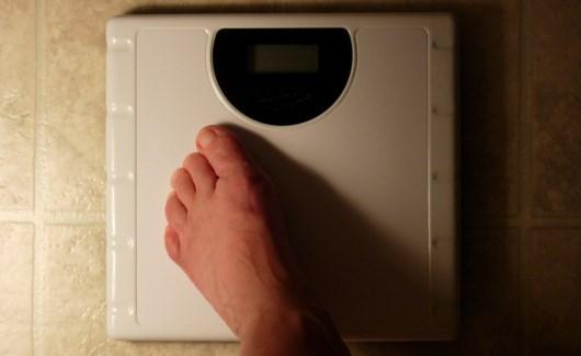 fat-loss-programs