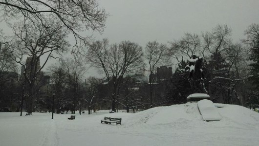 toronto-personal-trainers-winter